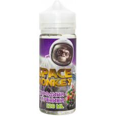 Жидкость Space Monkey 120 мл Смородина Клубника 3 мг/мл