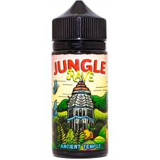Жидкость Jungle Rave 120 мл Ancient Temple