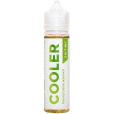 Жидкость Cooler Salt 60 мл Кактусовая Жвачка 20 мг/мл