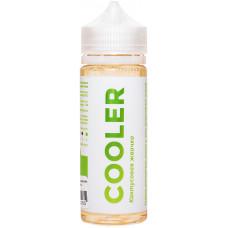 Жидкость Cooler 120 мл Кактусовая Жвачка 3 мг/мл