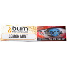 Табак Burn 20 гр Lemon Mint