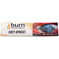 Табак Burn 20 гр Juice Apricot