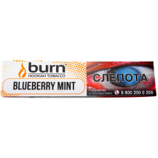 Табак Burn 20 гр Blueberry Mint