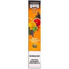 Вейп GANG X Хвоя Тропические фрукты Одноразовый