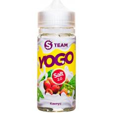 Жидкость S Team Salt 100 мл Yogo Кактус 3 мг/мл